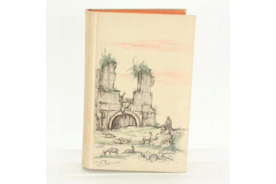 Das buch von san Michelle  Alex Munthe Knihy