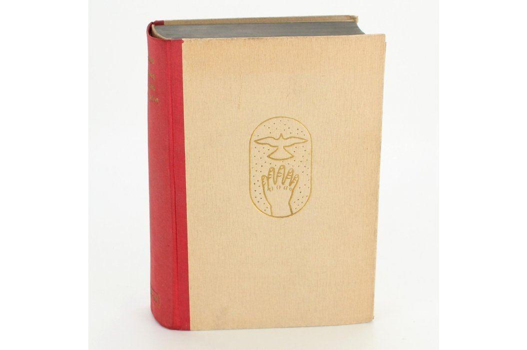 Kniha Romance o chámu Dynybylovi Knihy