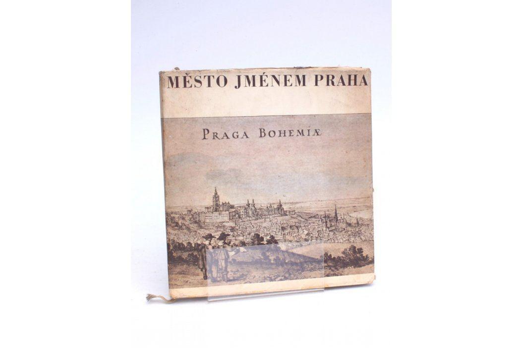 Kniha Karel Šiktanc: Město jménem Praha Knihy