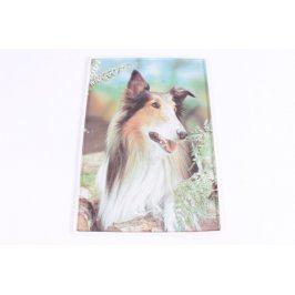 3D obraz psa v přírodě 47 x 33 cm
