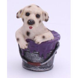 Pes v kbelíku