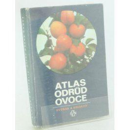 Kniha Dvořák et al.: Atlas odrůd ovoce