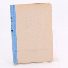 Kniha Dům doktora Maltha Johannes Buchholtz
