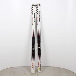 Sjezdové lyže Atomic Pro Carv 6´22