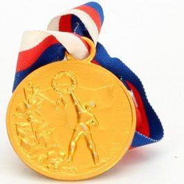 Medaile DPM v Litvínově