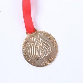 Medaile Pionýrský Tábor ROH