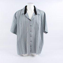 Pánská košile proužkatá Luko