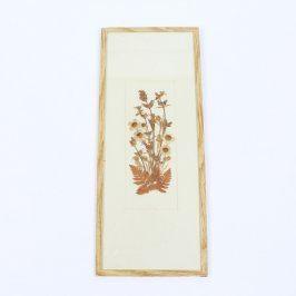 Obraz Zádruha sušené květiny