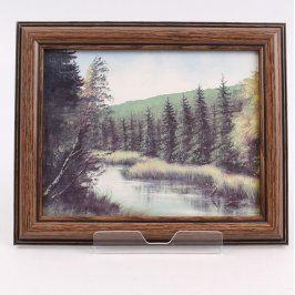 Obraz v rámu Stromy na břehu říčky