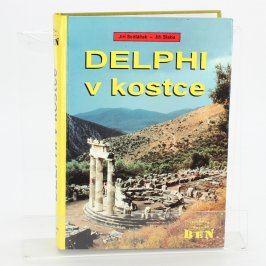 Počítačová literatura DELPHI v kostce