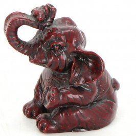 Slon se stočeným chobotem