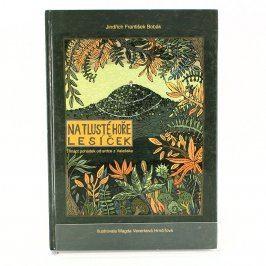 Kniha Na Tlusté hoře lesíček