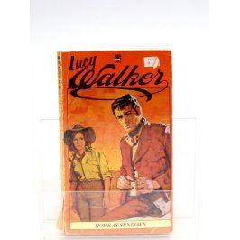 Kniha Lucy Walker: Home at Sundown